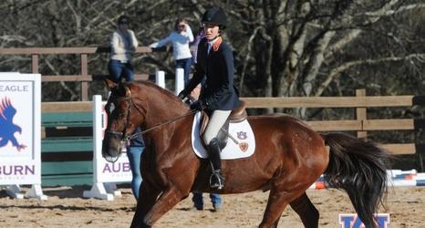 W Equestrian No 1 Auburn Hosts No 9 South Carolina