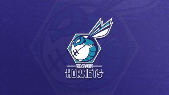 Graphic Designer Redesigns the Charlotte Hornets Logo