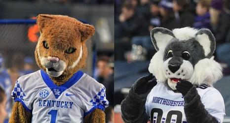 Mascot Showdown The Kentucky Wildcat Vs The Northwestern Wildcat