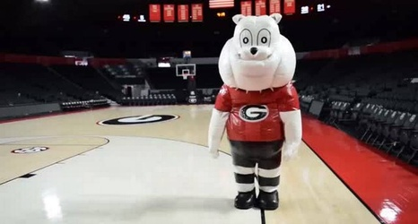 Like Spike What S Really Inside Georgia S Odd And Goofy